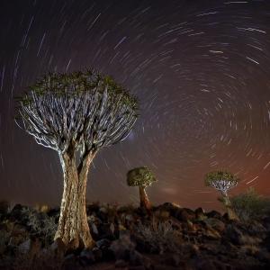 Longues expositions Namibie-3233-©P.Galibert