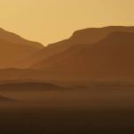 Namibie/ Namibia. Coucher de soleil, autruche / Sunset, ostrich.