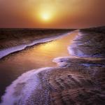 Le Chott el-Jérid شط الجريد, est la plus vaste plaine saline tunisienne avec une superficie d'environ 5 000 km².