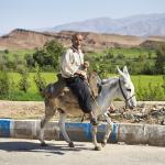 Iran-3600-©P.Galibert