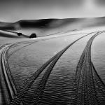 traces dans le désert libyen