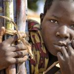 Malawi, Canne à sucre.