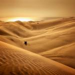 Namib désert.