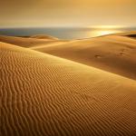 Sunset Namib désert. Namibia