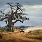 Raid 4x4 en Afrique Australe. Africatracks