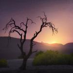 Coucher de soleil Namib désert