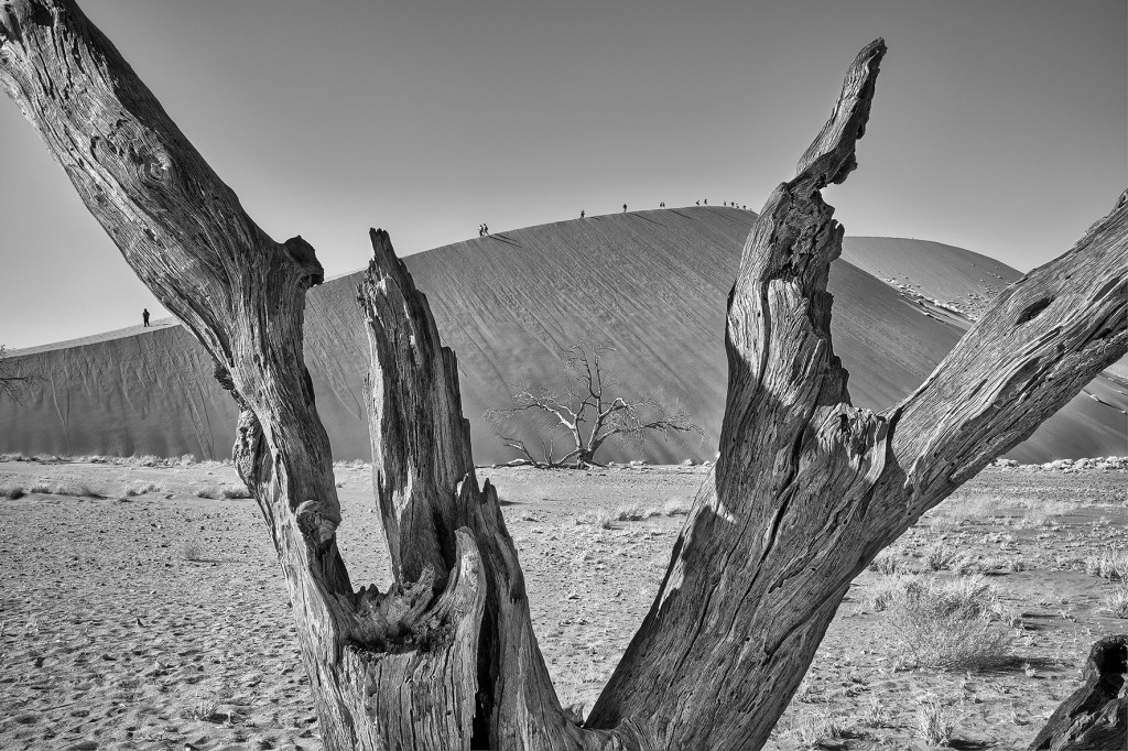 Deadvlei Namibie © Patrick Galibert