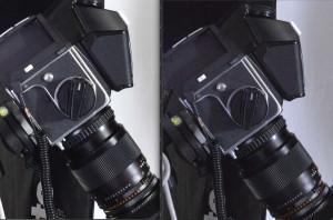 Image agrandie  à 100% Test Nikon D810 et Nikon D800E à 6400 iso, le verdict.
