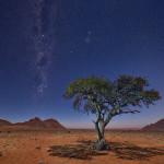 Namibie-7441-© P. Galibert