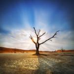 Deadvlei in blu,white,red, Namibia Patrick GALIBERT;Patrick Galibert